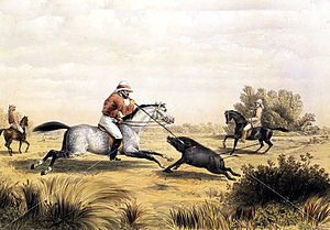 Percy Carpenter - Image: Hog Hunting in Bengal Percy Carpenter