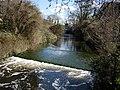 Hogsmill River - geograph.org.uk - 151428.jpg