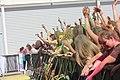 Holi Festival 2018 in Italy.43.jpg