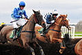 Horse racing (3310055992).jpg