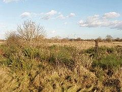Hounslow Heath olhando para o norte do caminho London Loop.