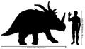 Human-styracosaurus size comparison.png