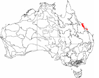 Central Mackay Coast Region in Queensland, Australia