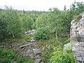 IMG 0131Черная скала в национальном парке Таганай.jpg