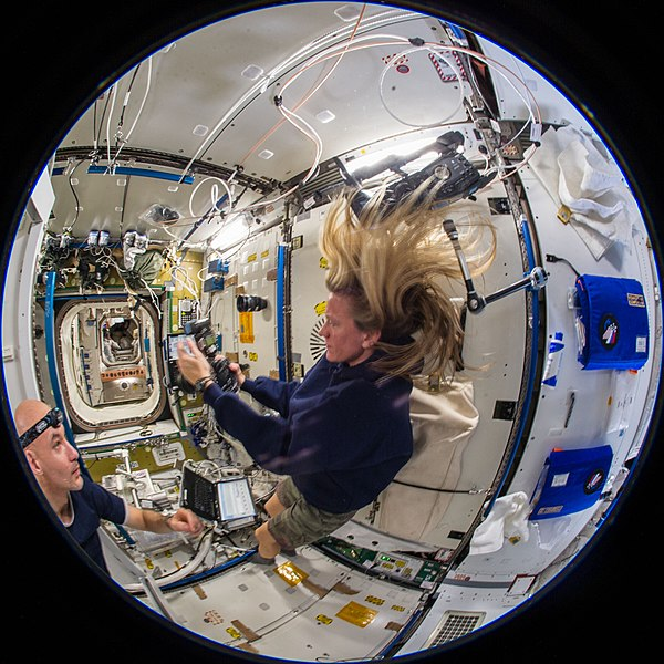 File:ISS-36 Luca Parmitano and Karen Nyberg in the Tranquility module.jpg