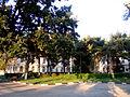 Iaşi , Faculty of Orthodox Theology 6.jpg