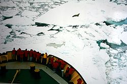 An icebreaker in the Ross Sea.  Image: Brocken Inaglory.