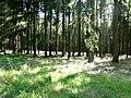 Idarwald – Nähe Idarkopf - panoramio.jpg