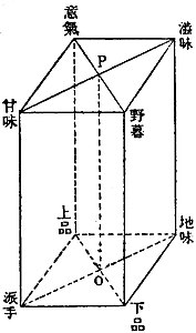Iki-no-Kozo-fig2.jpg