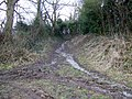 Imber Range Path, Chitterne - geograph.org.uk - 1159444.jpg
