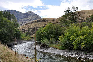 Imnaha River tributary of the Snake River in Oregon