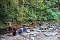 Indonesia - Bukit Lawang (26280104070).jpg