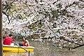 Inokashira Park 2009-04-05 (3446046741).jpg