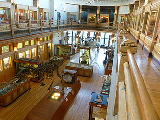 Redpath Museum - Interior of the museum