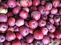 Jablka (2).jpg