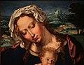 Jan gossaert e paesaggista anonimo, madonna col bambino in un paesaggio, 1531, 02.jpg