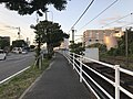 Japan National Route 495 and freight train of Kagoshima Main Line.jpg