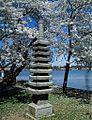 Japanese lantern on the Potomac River Tidal Basin 16055v.jpg