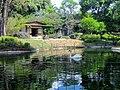 Jardim Japonês Jani Pereira (6).jpg