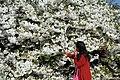 Jardin des Plantes @ Paris (33705617935).jpg