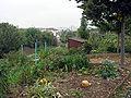 Jardin ouvrier Saint-Cloud (1).JPG