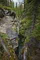 Jasper National Park 16.jpg