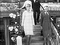 Jean Shrimpton's white dress.jpg