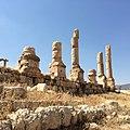 Jerash Kat1.jpg