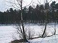 Jezioro k. Zagórza w zimie (1) - panoramio.jpg