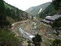 Jigokudani Yaen-koen(monkey park) 6.jpg