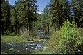 John Day River-Malheur (23566489369).jpg