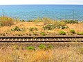 Jonian railway between Capo Spartivento and Spropolo - Palizzi, Province of Reggio Calabria, Italy - 16 Aug. 2014.jpg