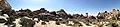 Joshua Tree Nationalpark Hidden Valley Nature Trail IMG 20180413 150335.jpg