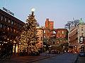 Julgranen på Stortorget 2006.jpg