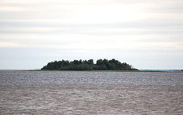 Kahvankari Oulu
