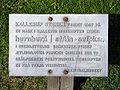 Kallerupstenen Hedehusene Denmark sign.jpg
