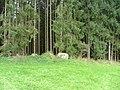 Kemptener Wald Findling bei Beilstein - panoramio.jpg
