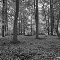 Kerkhofje - Denekamp - 20053588 - RCE.jpg