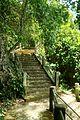 Khao Khuha stairs 2.jpg