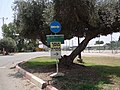 Kibbutz Masada (5).JPG