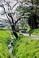 Kikinomichi02.jpg