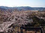 Kinugasayama Park01.jpg