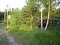Kirovsky District, Leningrad Oblast, Russia - panoramio - Владимир Парамонов (6).jpg