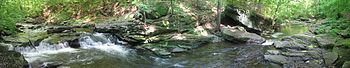 A panoramic view of a rocky creek with a small waterfall at left in a deciduous forest during the summer.