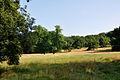 Klein Glienicke Wiesengrund von Süddrive.jpg