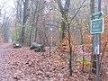 Kleinmachnower Mauerweg (Kleinmachnow Wall Way) - geo.hlipp.de - 30536.jpg