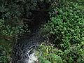 Kožlí (Myštice), potok.jpg