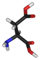 L-aspartic-acid-3D-sticks.png