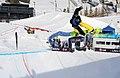 LG Snowboard FIS World Cup (5435331161).jpg