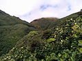 La Soufrière, Parc national de la Guadeloupe - 02.jpg